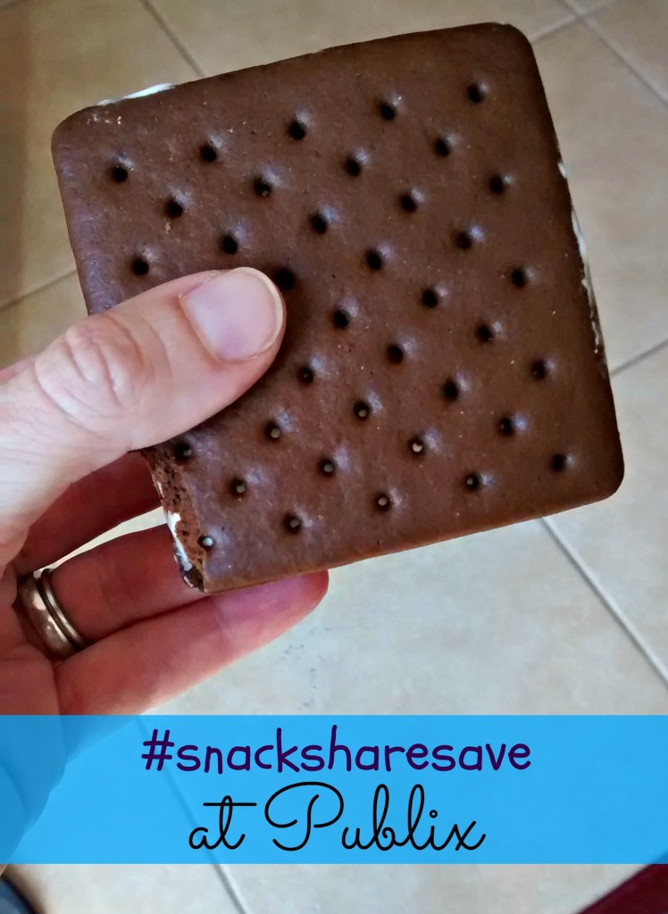 Grab-and-Go Snacks from Publix + PayPal #Giveaway #snacksharesave #ad | Mommy Runs It