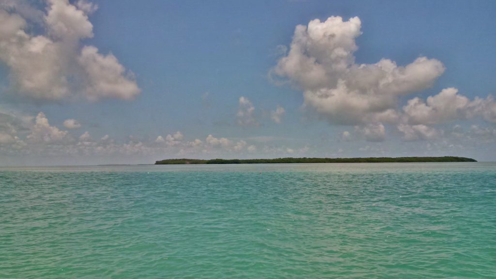 Florida Travel: Visiting the Keys + Florida Bay | Mommy Runs It